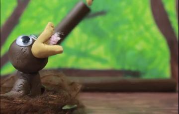 Clay animation of baby bird